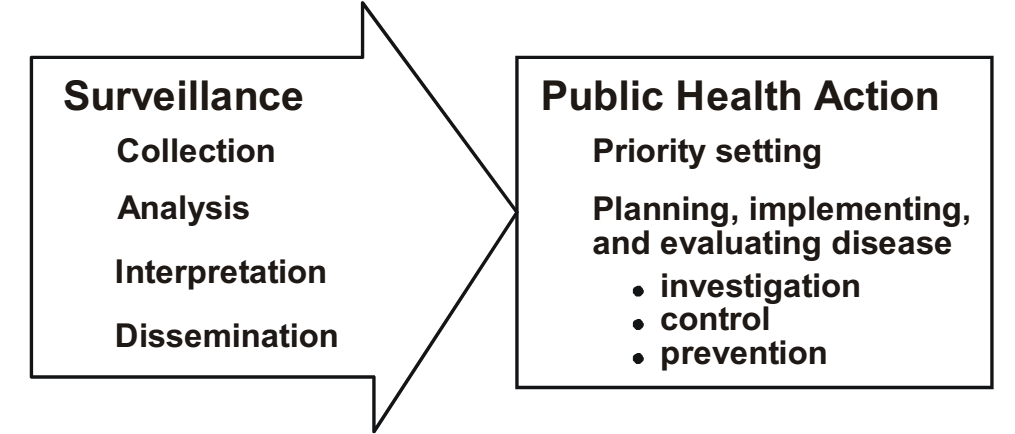 The components of integrated surveillance system and the resultant public health action